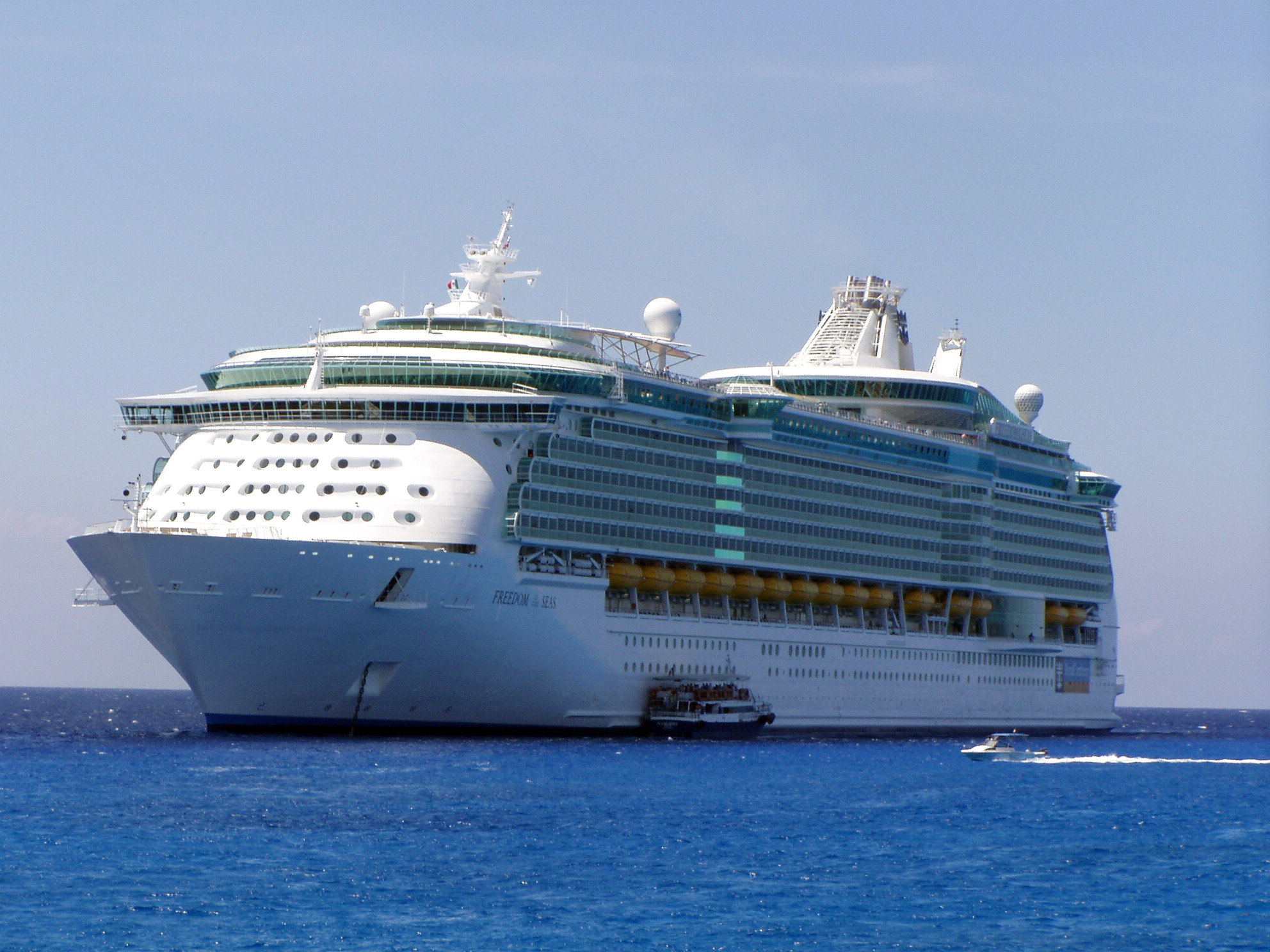 Grandfather Who Accidentally Dropped Toddler From Cruise Ship Could Face Charges